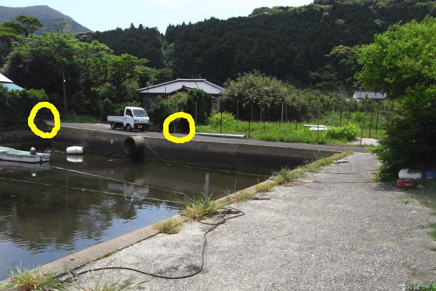 Kuwakuro003