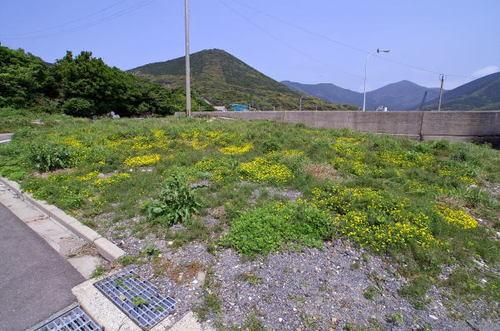 Miyako0504